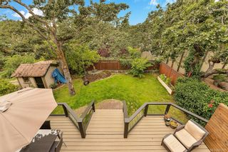 Photo 39: 3346 Linwood Ave in Saanich: SE Maplewood House for sale (Saanich East)  : MLS®# 843525