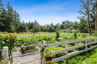 Photo 29: 21113 16 AVENUE in Langley: Agriculture for sale : MLS®# C8033266