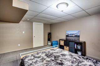 Photo 26: 53 EVERRIDGE Court SW in Calgary: Evergreen Detached for sale : MLS®# C4304957