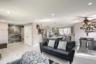 Photo 18: 6511 24 Avenue NE in Calgary: Pineridge Detached for sale : MLS®# A1152283