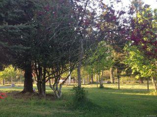 Photo 71: 6235 N Island Hwy in COURTENAY: CV Courtenay North House for sale (Comox Valley)  : MLS®# 833224