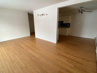 Photo 15: 206 10023 164 Street in Edmonton: Zone 22 Condo for sale : MLS®# E4247123