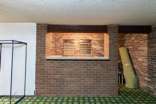 Photo 25: 155 MILLBOURNE Road E in Edmonton: Zone 29 House for sale : MLS®# E4265815