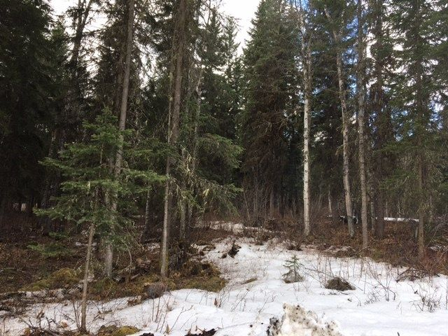 Photo 8: Photos: LOT 1 MARSH Road in Quesnel: Quesnel - Rural West Land for sale (Quesnel (Zone 28))  : MLS®# R2560822