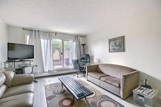 Photo 13: 119 333 Garry Crescent NE in Calgary: Greenview Apartment for sale : MLS®# A1139361