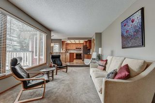 Photo 21: 207 EDGEBROOK Close NW in Calgary: Edgemont Detached for sale : MLS®# A1021462