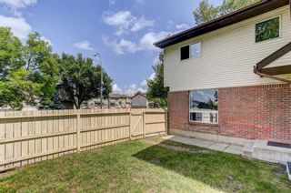 Photo 27: 74 32 WHITNEL Court NE in Calgary: Whitehorn Row/Townhouse for sale : MLS®# A1016839