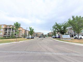 Photo 32: 438 6076 SCHONSEE Way in Edmonton: Zone 28 Condo for sale : MLS®# E4260047