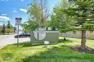 Photo 4: 202 69 Springborough Court SW in Calgary: Springbank Hill Apartment for sale : MLS®# A1123193