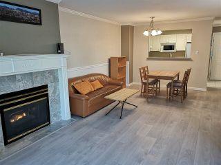Photo 3: 203 9763 140 Street in Surrey: Whalley Condo for sale (North Surrey)  : MLS®# R2568837