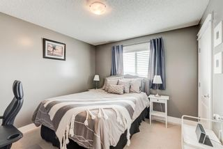 Photo 26: 17 Royal Birch Landing NW in Calgary: Royal Oak Residential for sale : MLS®# A1060735