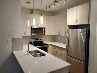 Photo 5: #305 17 COLUMBIA AV W: Devon Condo for sale : MLS®# E4204138
