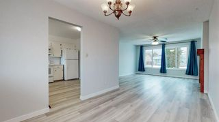 Photo 9: 3807 49 Street NE in Calgary: Whitehorn Detached for sale : MLS®# A1066626
