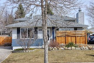 Photo 50: 315 Banister Drive: Okotoks Detached for sale : MLS®# A1089358