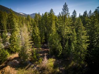 Photo 9: LOT 2 HIGHWAY 3A in Nelson: Vacant Land for sale : MLS®# 2455415