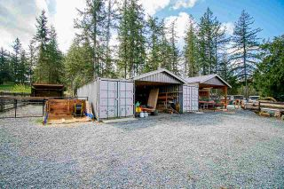 Photo 32: 115 208 Street in Langley: Campbell Valley House for sale : MLS®# R2564741