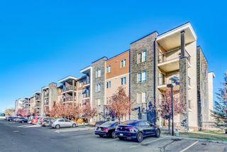Main Photo: 404 7110 80 Avenue NE in Calgary: Saddle Ridge Apartment for sale : MLS®# A1154355