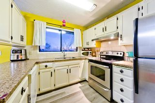 Photo 30: 4728 Rundlehorn Drive NE in Calgary: Rundle Detached for sale : MLS®# A1051594