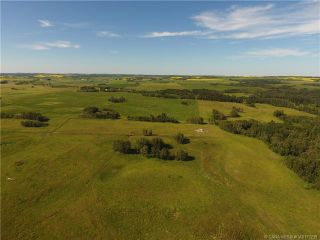 Photo 44: 41405 Range Road 231: Rural Lacombe County Detached for sale : MLS®# CA0173239