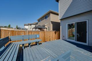 Photo 7: 5619 18 Avenue in Edmonton: Zone 53 House for sale : MLS®# E4252576