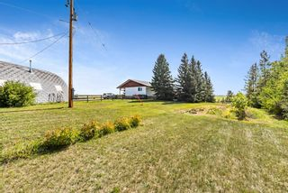 Photo 38: 370004 160 Street W: Rural Foothills County Detached for sale : MLS®# A1145850