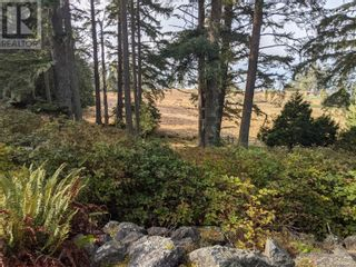 Photo 4: 7200 East Sooke Rd in Sooke: Vacant Land for sale : MLS®# 887209