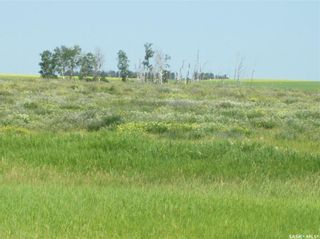 Photo 23: Eagle Creek Acreage 80 Acres in Asquith: Lot/Land for sale : MLS®# SK863384