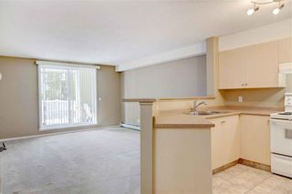 Photo 8: 1112 2518 FISH CREEK Boulevard SW in Calgary: Evergreen Apartment for sale : MLS®# C4209656