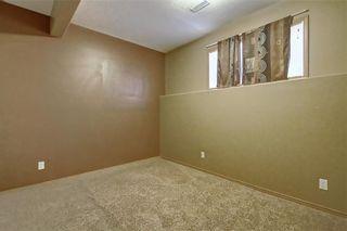 Photo 34: 207 SADDLEMEAD Close NE in Calgary: Saddle Ridge Detached for sale : MLS®# C4236086