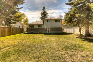 Photo 33: 3316 36 Avenue SW in Calgary: Rutland Park Detached for sale : MLS®# A1149414