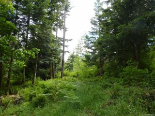 Photo 14: SL 14 950 Heriot Bay Rd in QUADRA ISLAND: Isl Quadra Island Land for sale (Islands)  : MLS®# 841835