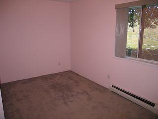 Photo 17: 122 MINER Street in New Westminster: Sapperton 1/2 Duplex for sale : MLS®# V847619