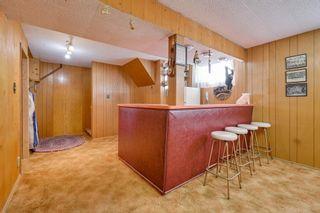 Photo 18: 3617 113 Avenue in Edmonton: Zone 23 House for sale : MLS®# E4261737