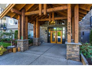 Photo 1: 310 2990 BOULDER Street in Abbotsford: Abbotsford West Condo for sale : MLS®# R2401369