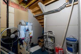 Photo 31: 3307 41 Street: Leduc House for sale : MLS®# E4224212