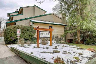 """Photo 20: 3402 COPELAND Avenue in Vancouver: Champlain Heights Townhouse for sale in """"COPELAND"""" (Vancouver East)  : MLS®# R2242986"""