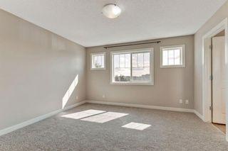 Photo 21: 129 Silverado Plains Close SW in Calgary: Silverado Detached for sale : MLS®# A1139715