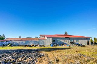 Photo 17: 190 DEFEHR Road in Abbotsford: Aberdeen Agri-Business for sale : MLS®# C8036607