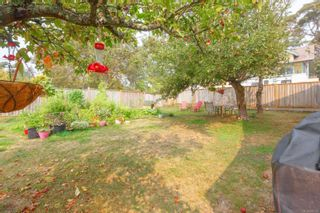 Photo 12: 2870 Austin Ave in : SW Gorge House for sale (Saanich West)  : MLS®# 856230