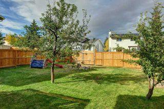 Photo 20: 59 Macewan Park Road NW in CALGARY: MacEwan Glen Residential Detached Single Family for sale (Calgary)  : MLS®# C3587816