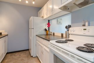 "Photo 10: 192 27456 32 Avenue in Langley: Aldergrove Langley Townhouse for sale in ""Cedar Park"" : MLS®# R2371784"