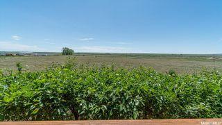 Photo 48: Gieni Acreage in Caron: Residential for sale (Caron Rm No. 162)  : MLS®# SK863053