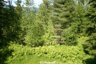 Photo 16: 4827 Goodwin Road in Eagle Bay: Vacant Land for sale : MLS®# 10116745