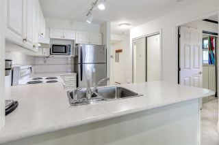 Photo 5: 102 980 W 21ST AVENUE in Vancouver: Cambie Condo for sale (Vancouver West)  : MLS®# R2066274