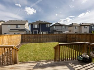 Photo 3: 155 Skyview Shores Crescent NE in Calgary: Skyview Ranch Detached for sale : MLS®# A1110098