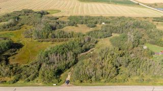 Photo 3: 55328 RRG 265: Rural Sturgeon County Rural Land/Vacant Lot for sale : MLS®# E4138970