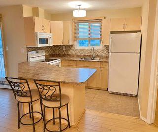 Photo 8: 302 4310 33 Street: Stony Plain Condo for sale : MLS®# E4255148