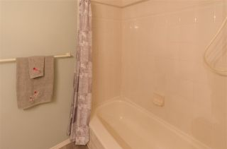 Photo 28: 7903 118A STREET in Delta: Scottsdale House for sale (N. Delta)  : MLS®# R2484516