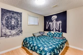 Photo 30: 2510 26 Street SE in Calgary: Southview Detached for sale : MLS®# A1105105