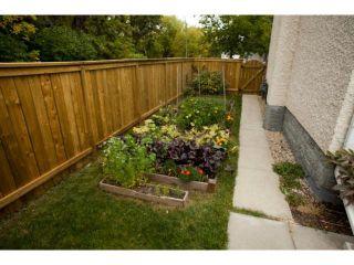 Photo 18: 520 St. Catherine Street in WINNIPEG: St Boniface Residential for sale (South East Winnipeg)  : MLS®# 1219381